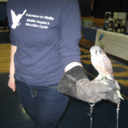 Volunteers for Wildlife Presentation and Telecare Tapings photo album thumbnail 6